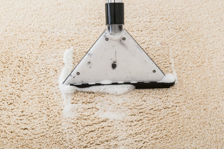Carpet shampooing and extraction